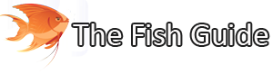 The Fish Guide Logo